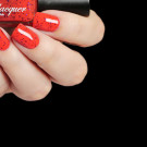 Cadillacquer Embrace The Madness