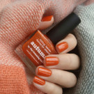 piCture pOlish Autumn (Autumn)