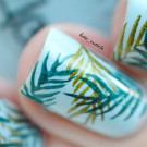 MoYou London Tropical 24 (автор - kate_cuticle)