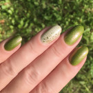 Enchanted Polish Cactus Rose (author - lubnina_n)
