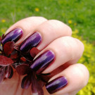 piCture pOlish Poison (author - Тусена)