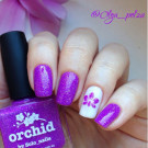 piCture pOlish Orchid (Orchid) (автор - Olga_polza)