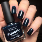 Picture Polish Aquatic (author - Vixen)