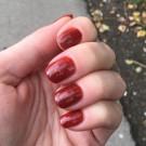 Ginger Polish Autumn Leaves (author - Ussury)