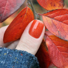 piCture pOlish Autumn (Autumn) (автор - Полина Т.)