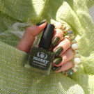 piCture pOlish Mossy (Mossy) (автор - forcakatie)