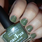 piCture pOlish Cactus (author - Dirty Johnny)