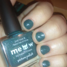 piCture pOlish Meow (автор - Dirty Johnny)