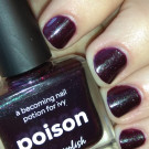 piCture pOlish Poison (author - Dirty Johnny)