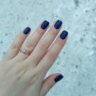 CELANASTE Starry Sky (author - anna_garo_21)