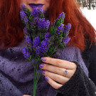 Colors by Llarowe Twinkle Toes (автор - alena_skazka)