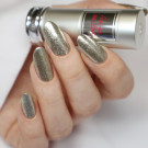 Cirque Colors Reflektor (LE) (author - Nails and Cats)