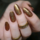 ILNP Sparks May Fly (author - Nails and Cats)