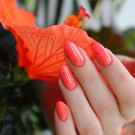 Tips Набор лаков Summer 2019 (author - Nails and Cats)