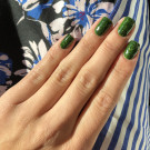 piCture pOlish Forest (author - findmenowhere)