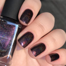 ILNP Black Orchid (author - olga.cht)