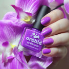 piCture pOlish Orchid (Orchid) (автор - Sasshhaaaa)