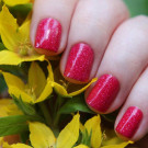 piCture pOlish Rose (Rose) (автор - Александра Р.)