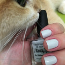 piCture pOlish LakoDom (автор - Олечка)