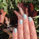 piCture pOlish Sage (Sage) (author - LёLя)
