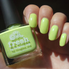 piCture pOlish Fresh (автор - Squirrel713)