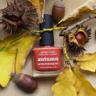 piCture pOlish Autumn (автор - seryj_kotenok)
