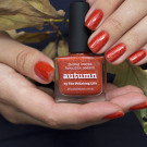 piCture pOlish Autumn (Autumn) (автор - seryj_kotenok)