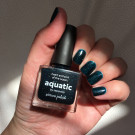Picture Polish Aquatic (author - Дина В.)