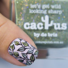 piCture pOlish Cactus (Cactus) (author - Hvastogrammm)