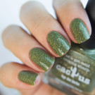 Picture Polish Cactus (author - Hvastogrammm)