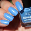 piCture pOlish Bluebird (автор - Skoronna)