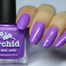 piCture pOlish Orchid (Orchid) (автор - Skoronna)