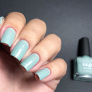 piCture pOlish Sage (Sage) (author - Alfiya0307)
