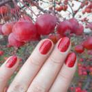 Tips Набор лаков Autumn 2018 (автор - nails_galinavoropay)