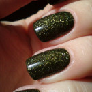 piCture pOlish Mossy (автор - Елена Г.)