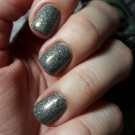 Enchanted Polish Prismatic Static (автор - _riddle.tula_)