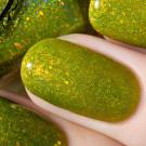 Enchanted Polish Organic Opal