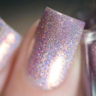 ILNP Morning Rays