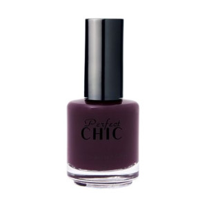 Perfect Chic 266 Dark And Handsome